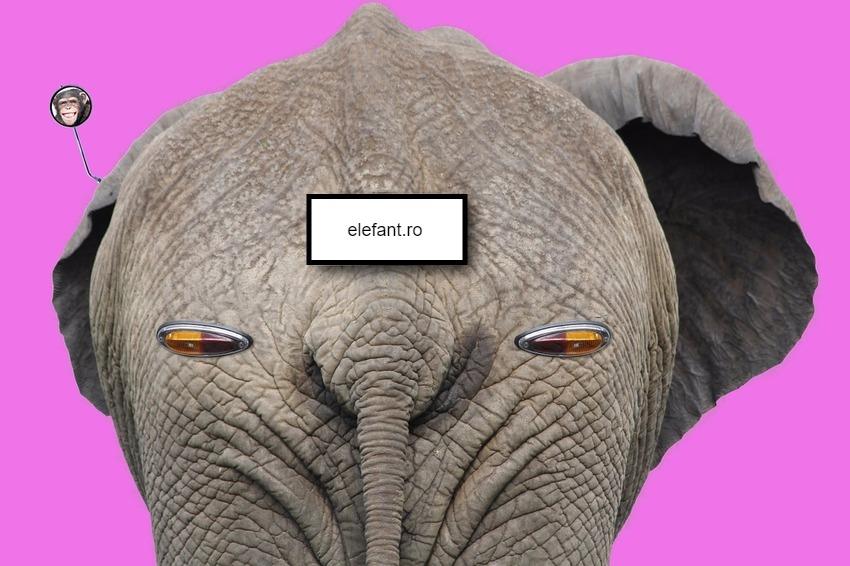 elefant.ro