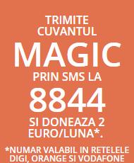 MagicHOME